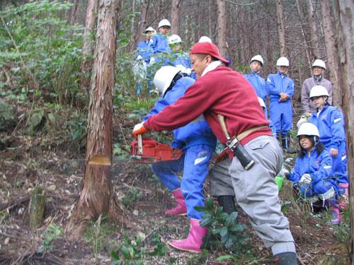 植林、間伐等を体験!洞中1年