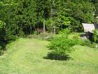 織部庵の草刈