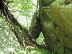 高賀山 山頂付近の巨石群