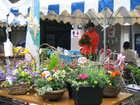 春の花まつり ラステンほらど開催