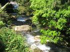 新緑の高賀渓谷